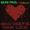 Sean Paul Feat Kelly Rowland - How Deep Is Your Love (Nati G Remix)