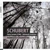 Schubert, Sonata in B-flat D960, II. Andante Sostenuto