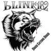 Blink-182 - Pretty LIttle Girl [Bass Cover]