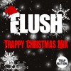 Flush - Trappy Christmas Mix 'supported by All Trap Nation'