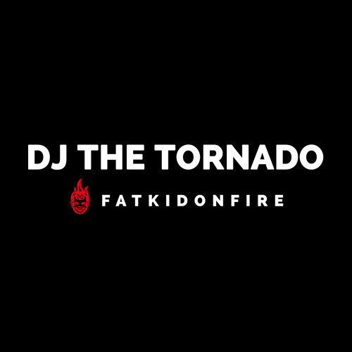 DJ The Tornado x FatKidOnFire (Best of 2013 pt. 1) mix