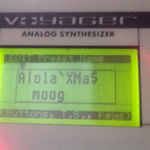 The Alola Moog For Xmas 122 Bpm