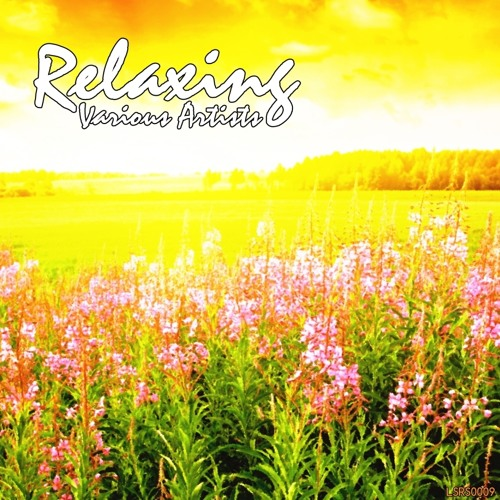 Various Artists - Relaxing (LSRS0009)