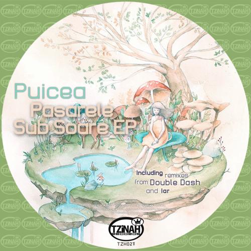 Puicea - Pasarele Sub Soare (Original Mix) Preview