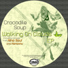 Crocodile Soup - Feel My Vibes (Original Mix) Preview