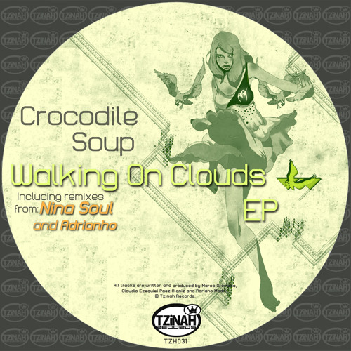 Crocodile Soup - Walking On Clouds (Adrianho's Gentle Interpretation Remix) Preview