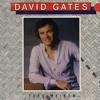 Free Download David Gates - Lady Valentine Mp3