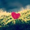يسرا محنوش - When I need You - بكرا - اغاني mp3