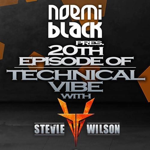 Stevie Wilson @ Technical Vibe Podcast #20