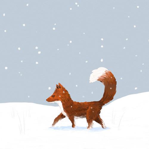 Ginger Snow