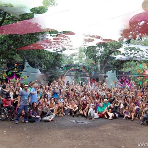Z-CaT - Amazing Crowd