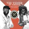REMEDY SOUND, THE VOICES OF JAMAICA, BERES HAMMOND, BUJU BANTON