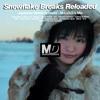 Snowflake Breaks - Reloaded -