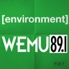 The Green Room: Deer Overpopulation, Its Impacts and Potential Solutions - 89.1 WEMU