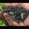 Biochar Workshop Part 3 The Carbon Cycle