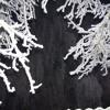 MACRIMA - Winterzeitfenster