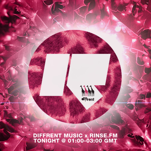 Rinse FM ~ Diffrent Music (27th Dec 2013)