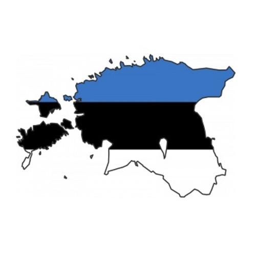 Dubstep in Estonia w/ Juritah - Dabsolis show - 27th Dec 2013