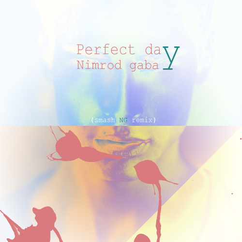Nimrod Gabay - Sasha Lopez Feat Radio Killer - Perfect Day (smash NG Remix)