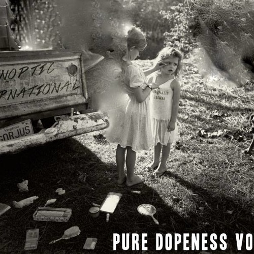 Nothing Takes The Place for Sinoptic International - Pure Dopeness Vol.8