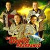 Los Alegres Del Barranco Falsos Amigos.mp3