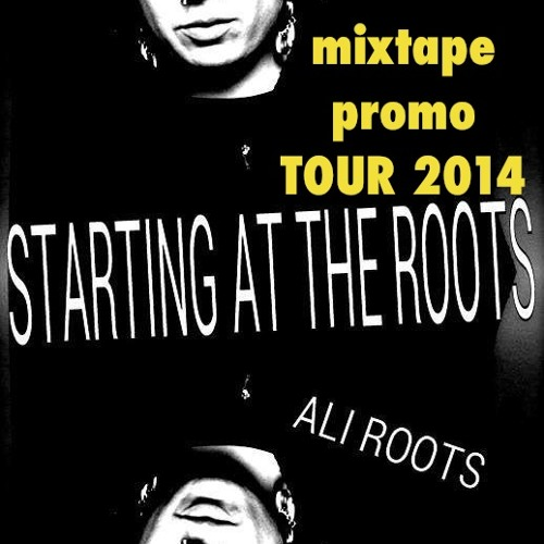 """MIXTAPE PROMO TOUR """"Starting At The Roots"""" 2014"""