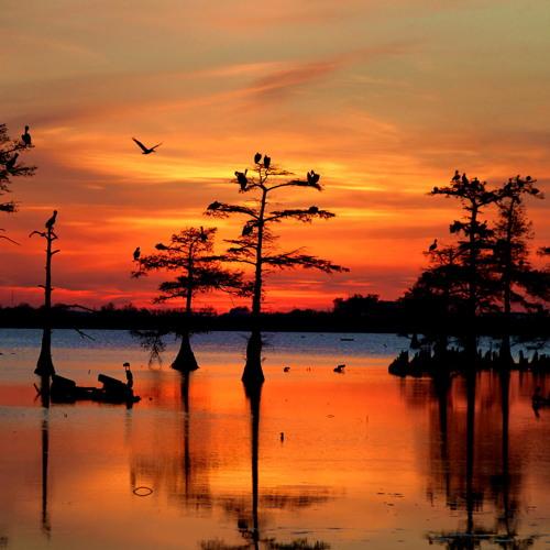 Crimson Sunsets by Katherine Wyatt (Trinity)