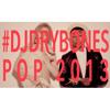 Top Pop Songs Of 2013 Mashup (Waking Up) - DJ Drybones