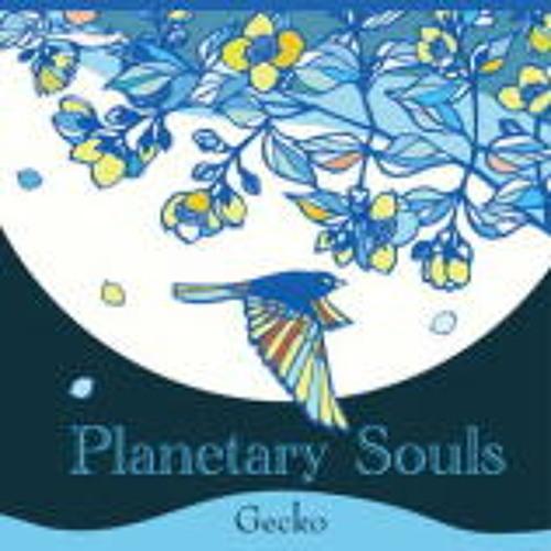 Planetary Souls / Gecko (TKGR-001) digest