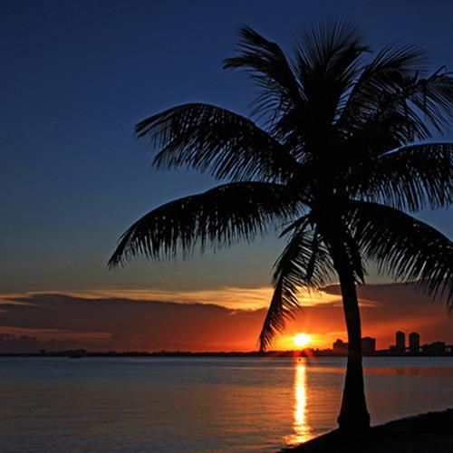 Syn Cole Vs Avicii Vs Tiesto - Take Me To Miami (John Beaver Mashup)
