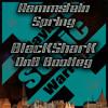 Rammstein-Spring (BlacKSharK DnB Bootleg)