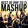 Best Of Pop 2013 - BeatAndSyncro Mashup