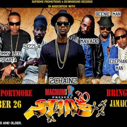 STING DEC 26TH 2013 - SUPER CAT, 2 CHAINZ, MOVADO, NINJA MAN, LADY SAW, SIZZLA, KIPRICH ETC.