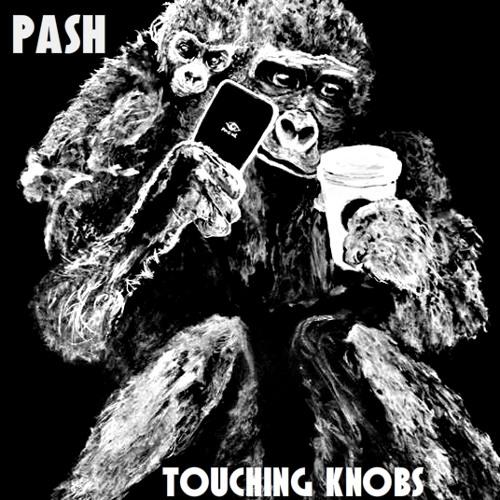 Pash – Touching Knobs