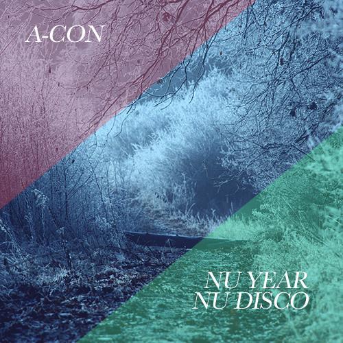 Nu Year, Nu Disco