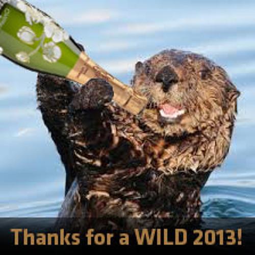 TRAVISWILD's Animal Kingdom Radio 011 - Sea Otter (2013 Special)