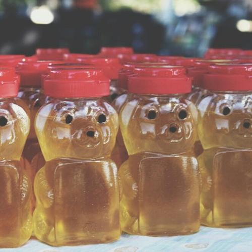 honey bee- zee avi (cover)