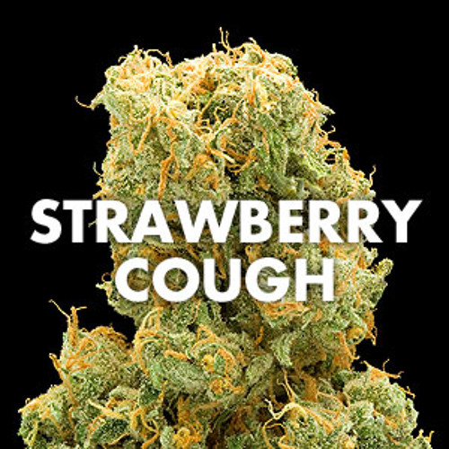 Strawberry Cough-(Jedi Kush-B-Simple)-Freddie Joachim Remix