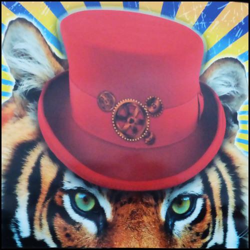 Que pensez-vous des animaux sauvages au cirque ?