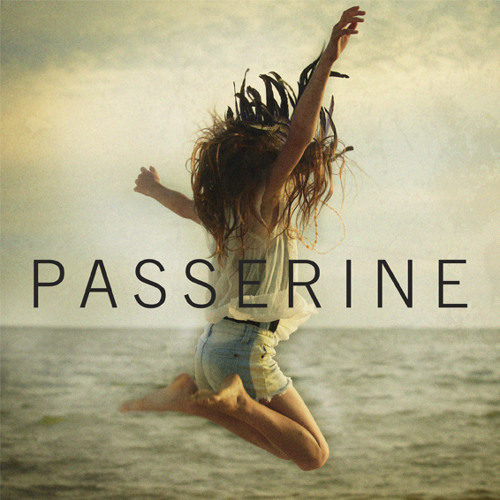 PASSERINE - What About Love