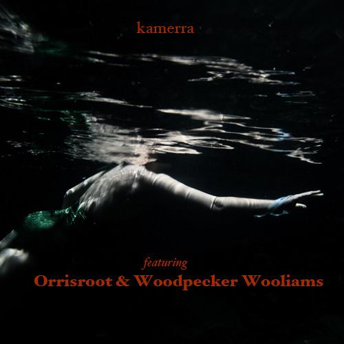 MELT featuring Orrisroot & Woodpecker Wooliams