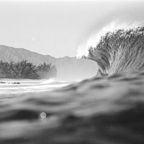 Martin Roth - Epic Waves | PREVIEW