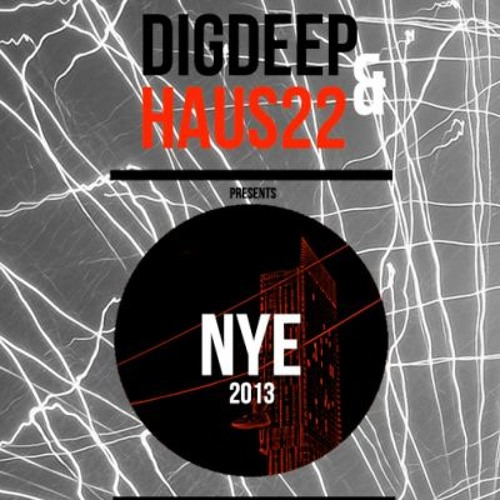 SKINNYfat @ Digdeep & Haus22 Pres. NYE 2013, Dry Live, Manchester - 31.12.2013