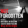 Brothers in Rhythm - Such a good feeling - Wild Intro Remix