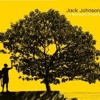 Jack Johnson - Better Together [Sample]