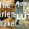 Harlem Shake Vs New World Sound & Thomas Newson ( Dj Mike mashup)