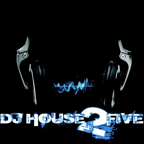 Housetwo5-One Night(original mix)