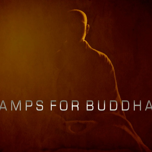 Amps For Buddha 2014