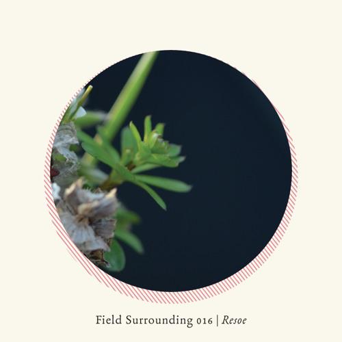 Field Surrounding 016 - Resoe