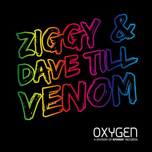 Martin Garrix vs. Ziggy & Dave Till - Animals Venom (Aeross Edit)